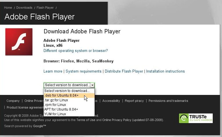 Adobe flash player 10 for windows 7 google chrome