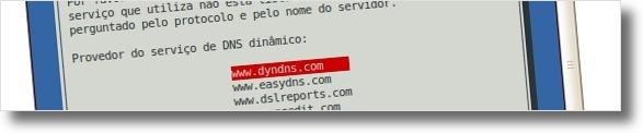 A seleccionar serviço de DNS's