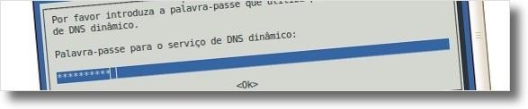 A digitar a senha do serviço do DNS