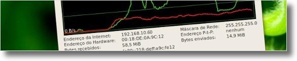 Detalhes da conexão apresentados pelo Netspeed