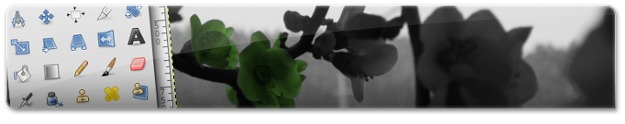 A alterar a cor da flor