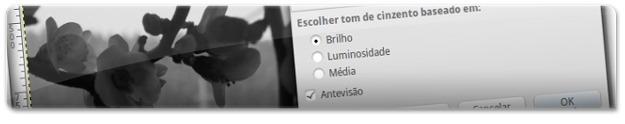 Escolha uma das 3 opções disponíveis conforme a que se adaptar melhor à imagem!