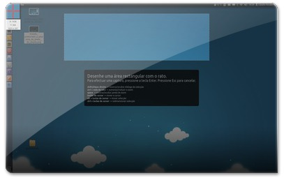 tirando printscreen a uma zona da janela do ubuntu