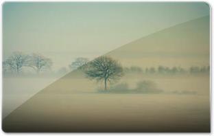 Winter Fog by Daniel VesterskovM